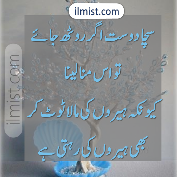 Poetry for Friends Forever in Urdu