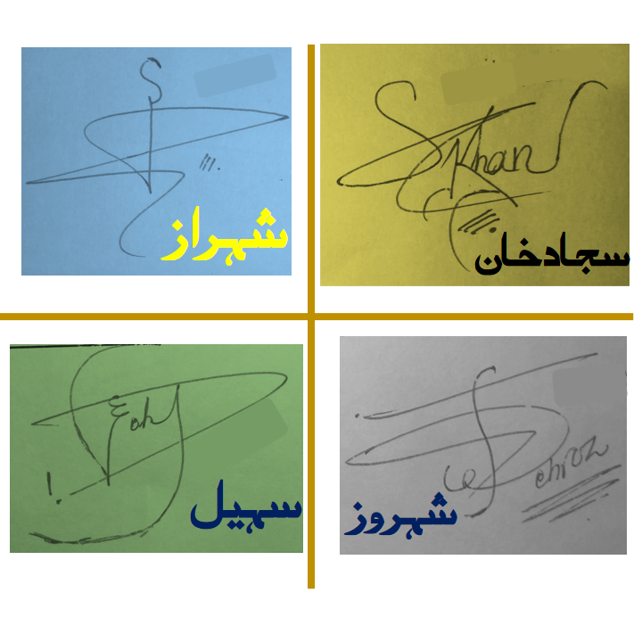 Handwritten Beautiful Signatures for S