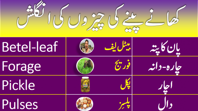 Vocabulary for Drinks & Eatables with Urdu Meanings
