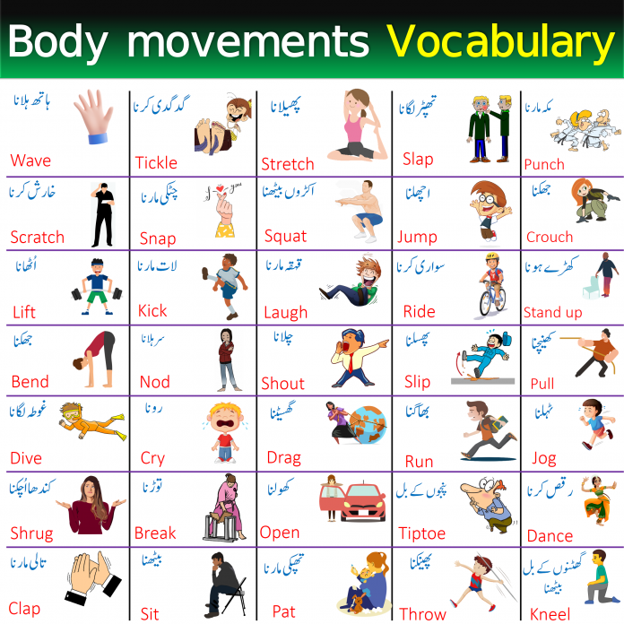 Vocabulary For Body Movements and Actions with Urdu Meanings