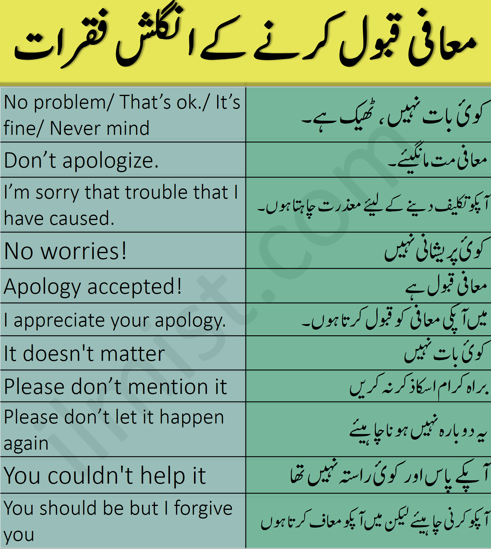 Daily English Sentences for Saying Sorry with Urdu Translation